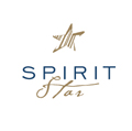 Visual Identity for SpiritStar